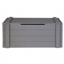 https://www.alfredetcompagnie.com/1817-home_default/chest-90x42x42-solid-wood-steel-grey.jpg