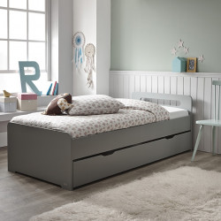 https://www.alfredetcompagnie.com/3615-home_default/pull-out-bed-200cm-with-bed-bases-rose-barthelemy-koala-grey.jpg