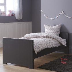 https://www.alfredetcompagnie.com/402-home_default/kids-bed-90x200-anthracite.jpg