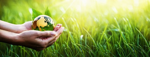 ecologie preserver planete